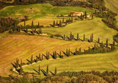 Tuscany photo tour landscape-05