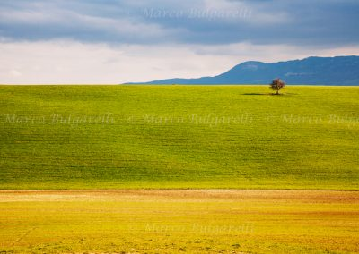 Tuscany photo tour landscape-19