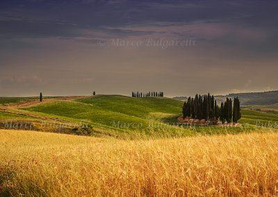 Tuscany photo tour landscape-42