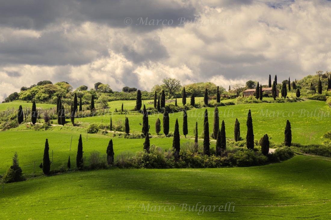 Tuscany photo tours-Landscape-151