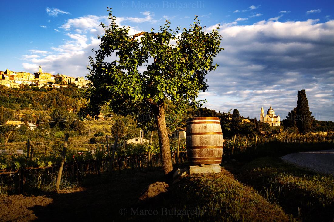 Tuscany photo tours-Landscape-156