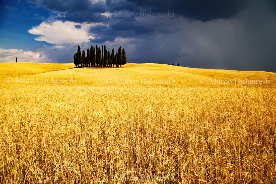 Tuscany photo tours-Landscape-158