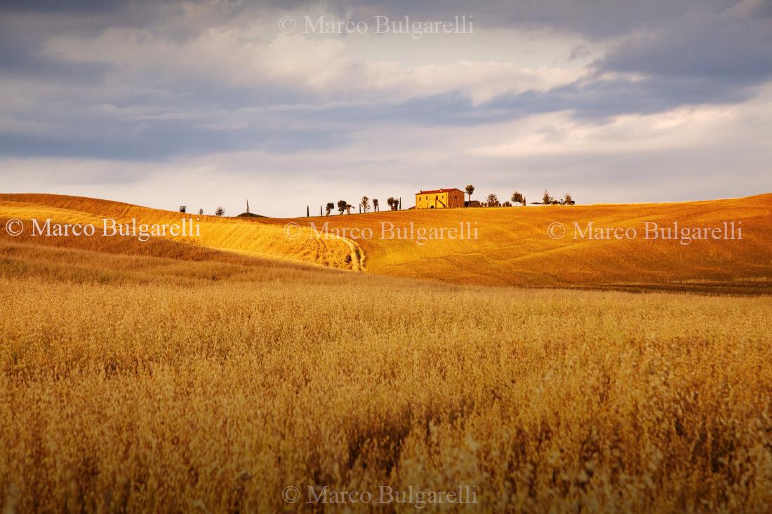 Tuscany photo tours-Landscape-159