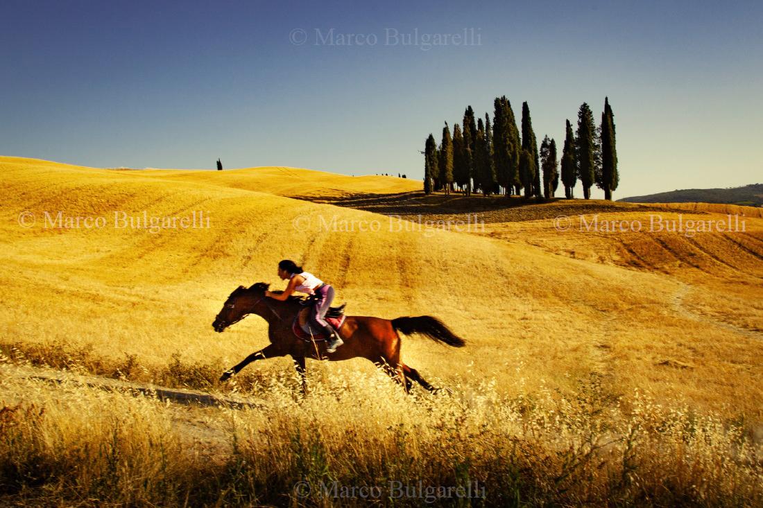 Tuscany photo tours-Landscape-161